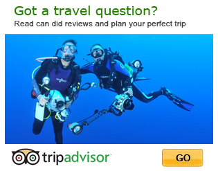 Bali Tours